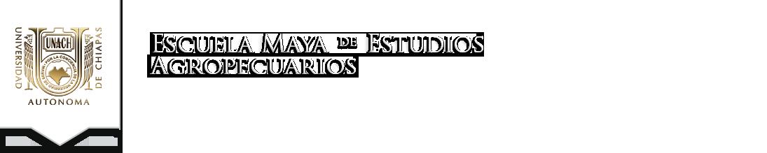 escuela maya